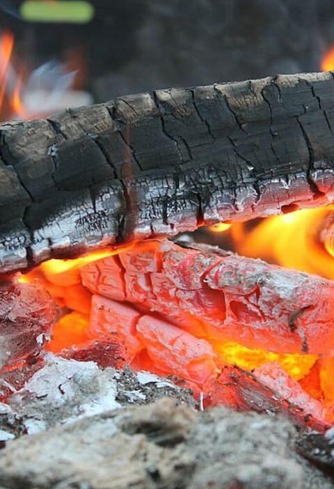 leña asado carbón